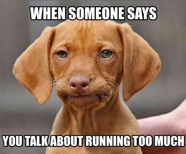When someone says you talk about running too much...