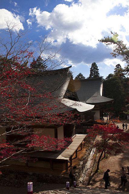 Jingo-ji Temple, Kyoto