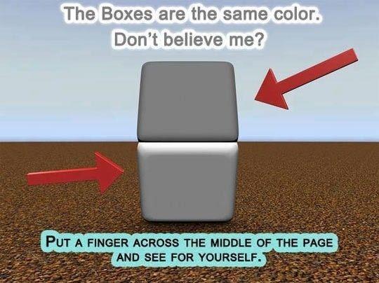 Color Box Illusion #lol #haha #funny