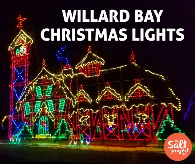 Willard Bay Christmas Lights The Salt Project Things To Do In Utah With Kids Christmas Lights Lights Bay