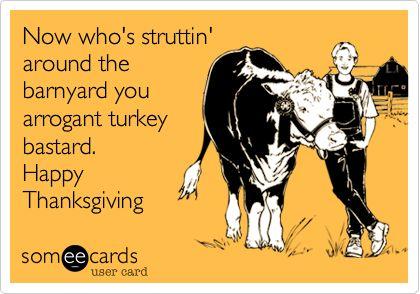 Funny Thanksgiving Ecard: Now who's struttin' around the barnyard you arrogant turkey bastard. Happy Thanksgiving.