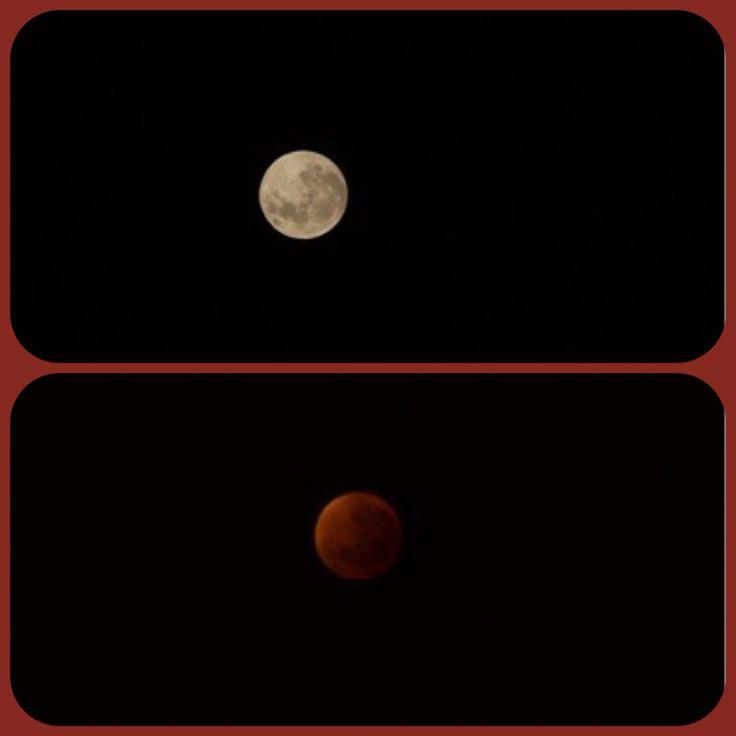 Bloodmoon 2015 #bloodmoon #moon