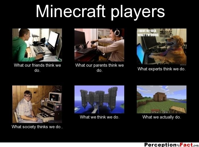 Minecraft players... - What people think I do, what I really do - Perception Vs Fact