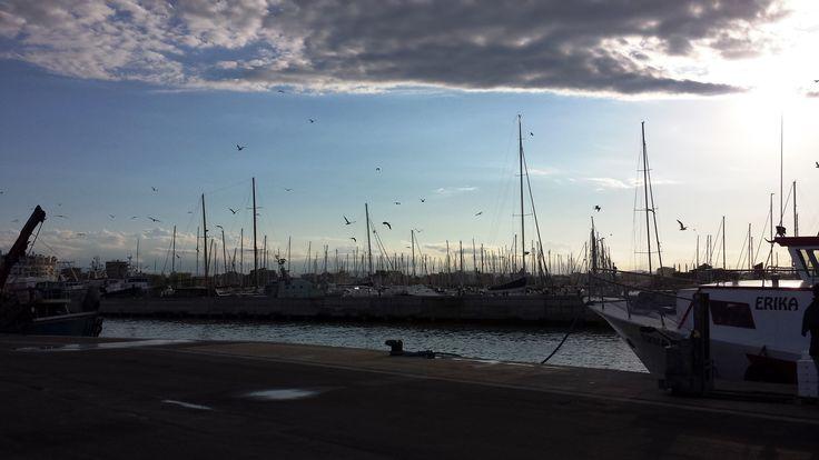 Rimini, la vita al porto all'ora del tramonto. Sunset at the port of Rimini. #rimini #tramonto #sunset #port #porto #barche