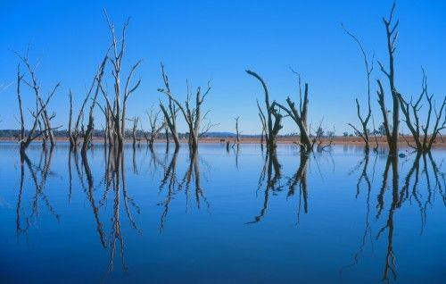 Lake keepit by Daniel Waters