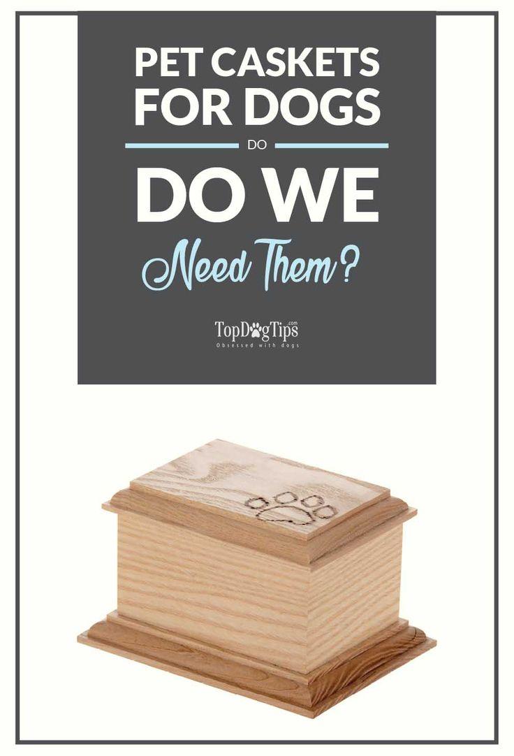 best 25 pet caskets ideas on pinterest halloween coffin diy