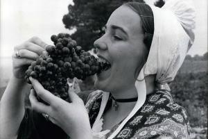 Jakie jest Wasze najlepsze wspomnienie związane z winem?