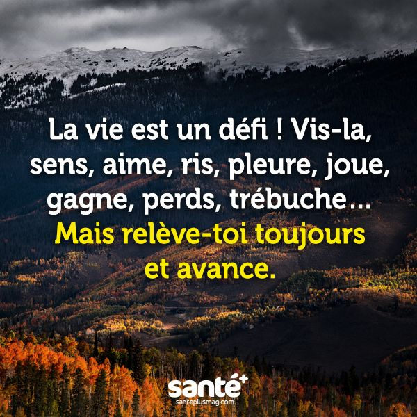 Favori 610 best Citations images on Pinterest | French quotes, Animal  II66