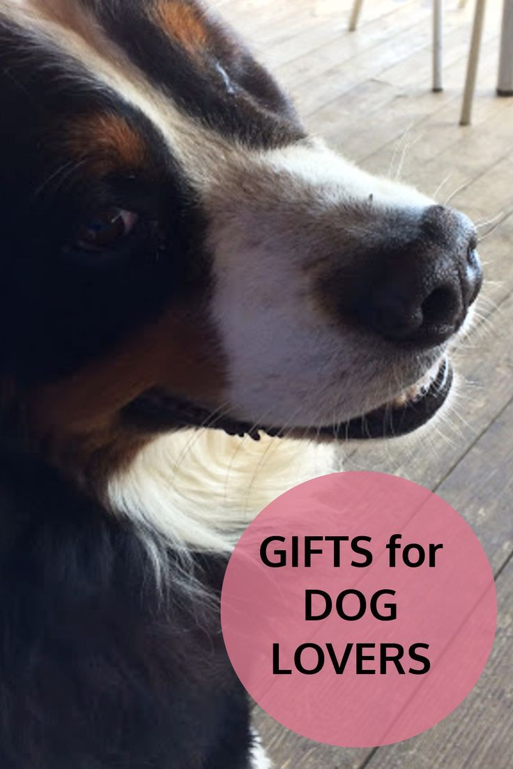 Gift Ideas For Dog Lovers Perfect Gifts Christmas Birthdays Or Other Occasions Fpr A Person That Loves Dogs