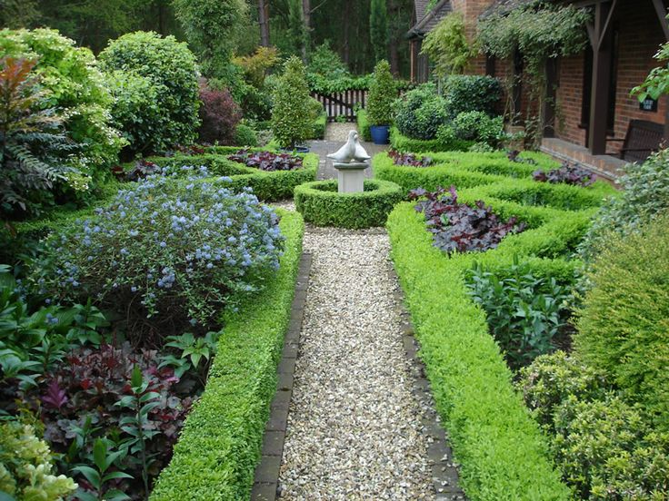 Beautifully composed garden path and boxwood lined