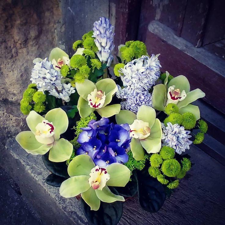 """0 aprecieri, 1 comentarii - Floraria Dorothy's (@florariadorothys) pe Instagram: """"Green.. #birthdaygift #cluj #clujnapoca #clujlife #clujcenter #florariecluj #viataincluj…"""""""