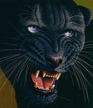 "Saatchi Art Artist Jürek Zamoyski; Painting, ""Black Panther"" #art"