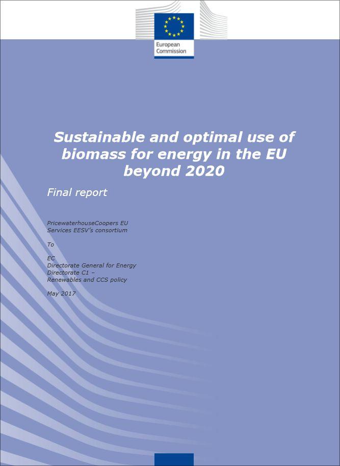 """Portada del informe """"Uso óptimo y sostenible de la biomasa para energía en la UE después de 2020""""."""