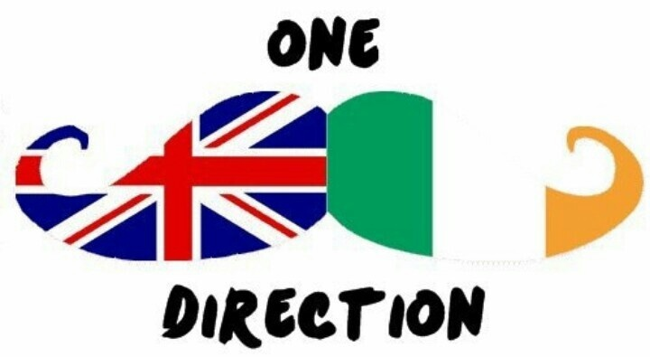 IT'S A MUSTACHE! AND IT'S THEIR FLAGS! AND IT'S ONE DIRECTION! ITS HEAVEN.