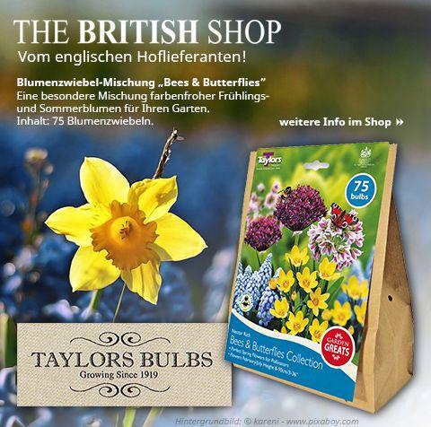 Ein echter Blickfang für Ihren Garten: Die Blumenzwiebel-Mischung vom englischen Hoflieferanten Taylor Bulbs, die ideal für Bienen und Schmetterlinge ist.