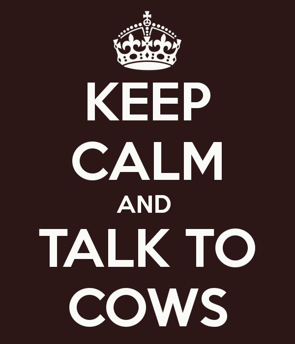 KEEP CALM AND TALK TO COWS . When I was little I would sit on the fence for hours and just watch the cows and talk to them.
