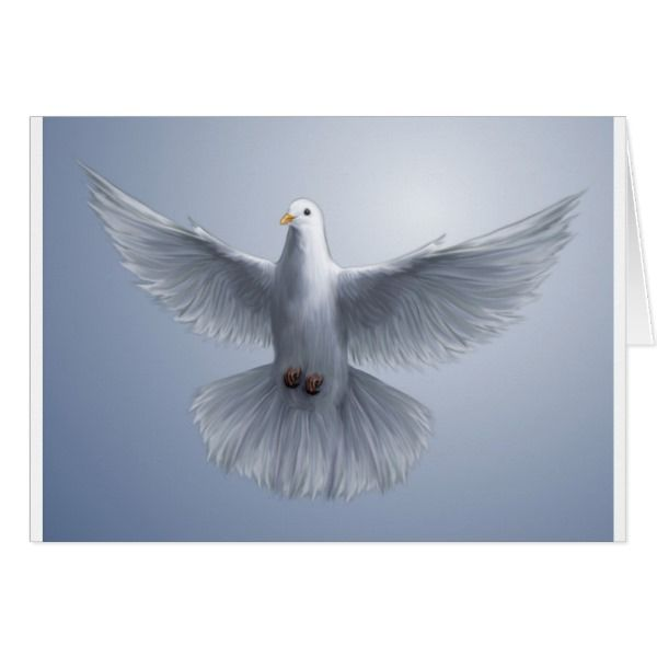 Holy Spirit dove Card #cards #christmascard #holiday