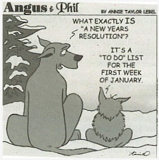 Here is some New Year Resolutions humor for you. Good luck for the whole year!: