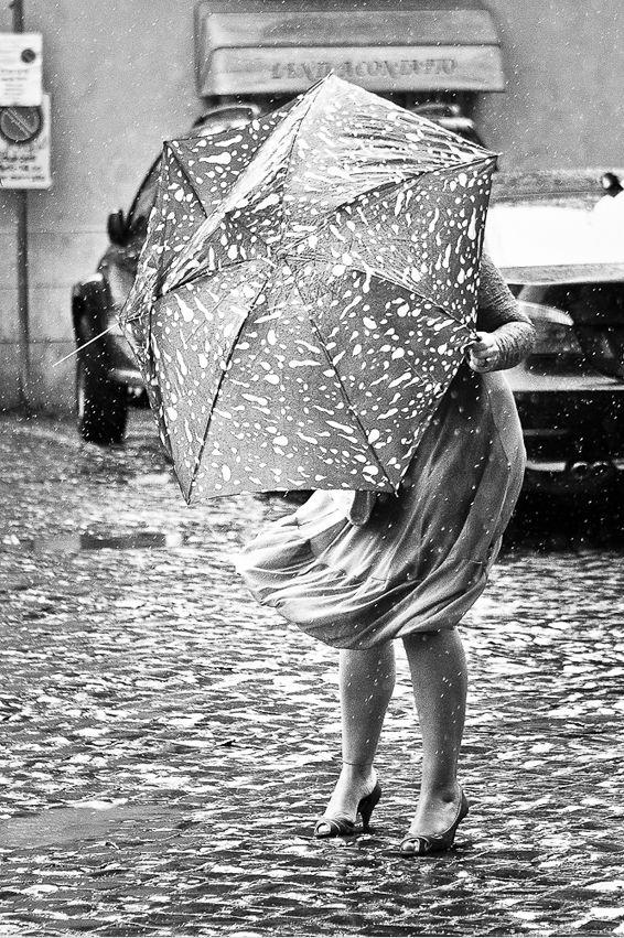 .: Oyvind Gregersen, Umbrellas, Style, White, Øyvind Gregersen, Photo, Black, Rainy Days