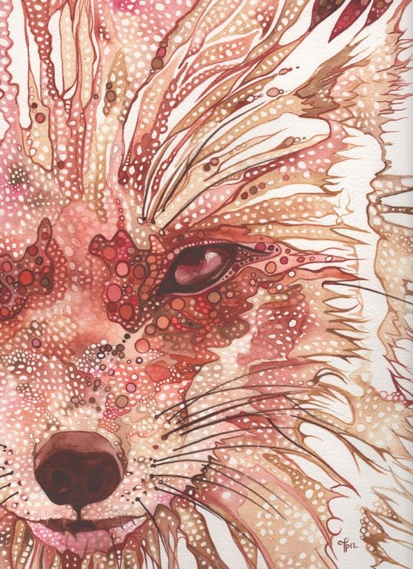 Animal Portraits by Tamara Phillips, via Behance