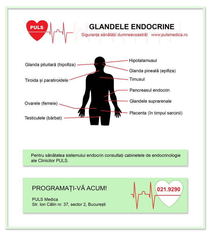 Glandele #endocrine