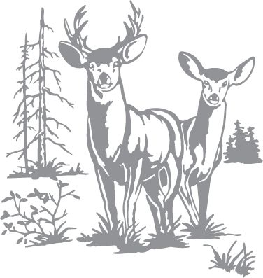Glass etching stencil of Doe and Buck Deer with Trees. In category: North American Mammals, North Woods, Trees