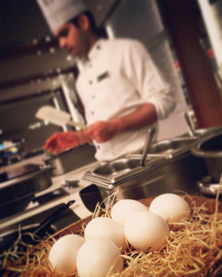 Яйце-мастер-шеф • Egg-cook ------  #egg #cook #cooking #kitchen #restaurante #restaurant #master #food #good #foodphotography #breakfast #omelette #chickens  #chicken #natural #bio #healthfood #india #delhi #newdelhi #pullman #hotel #pullmanhotel #creativ