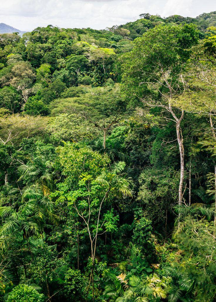 Panama. Notes et photos de voyage - Blog voyage