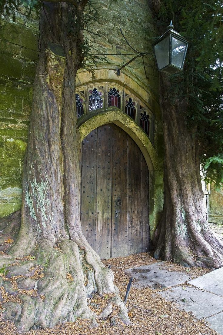 The north door at St Edward's Church, Stow-on-the-Wold, flanked by ancient yew trees. Picture © Nick Turner, courtesy Cotswolds Conservation Board