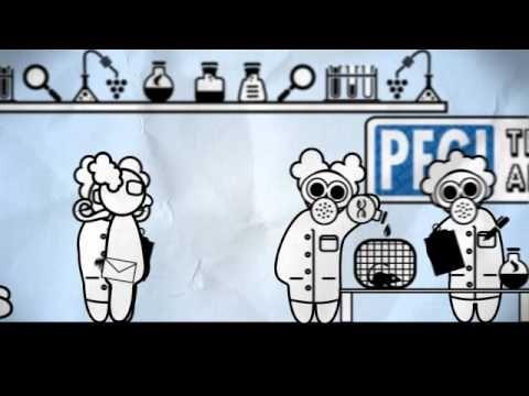 The PEGI age rating process