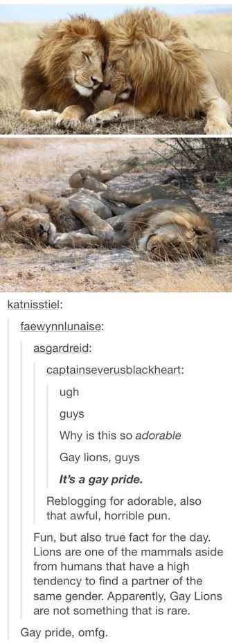 That is so cute!: