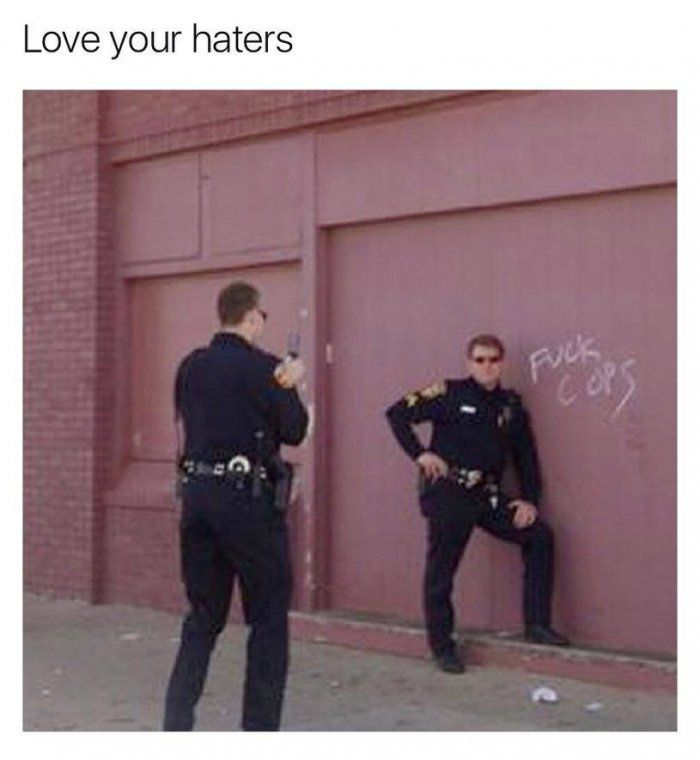 Love your haters meme