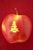 A 'Christmas apple'
