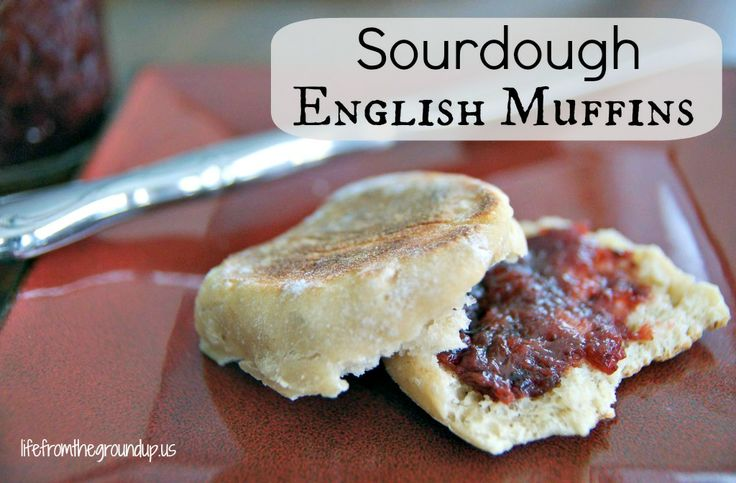 sourdough english muffin3 - wonder if this could be made with Tenina's fast sourdough?