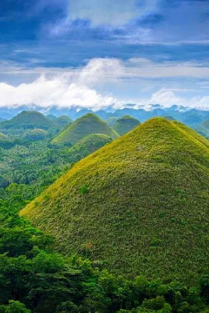 Famous Chocolate Hills in Bohol, Visayas, Philippines