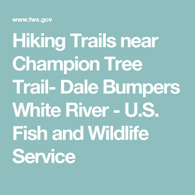 Hiking Trails near Champion Tree Trail- Dale Bumpers White River - U.S. Fish and Wildlife Service