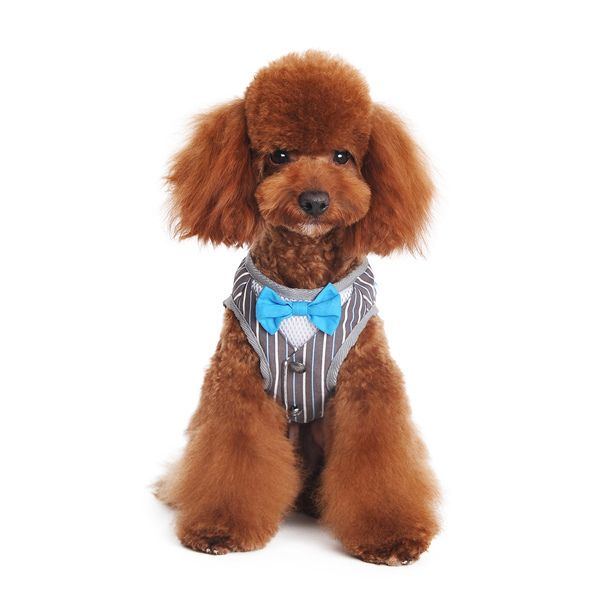 SnapGO Bowtie Gentleman Dog Harness Vest - $33.00