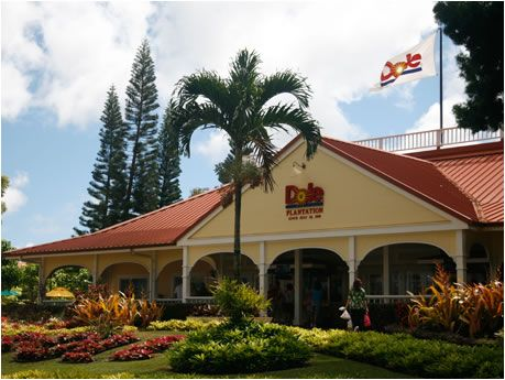 Dole Pineapple Plantation in Oahu, Hawaii.  My Dad stuffed himself with the fresh pineapple they had for sale there!