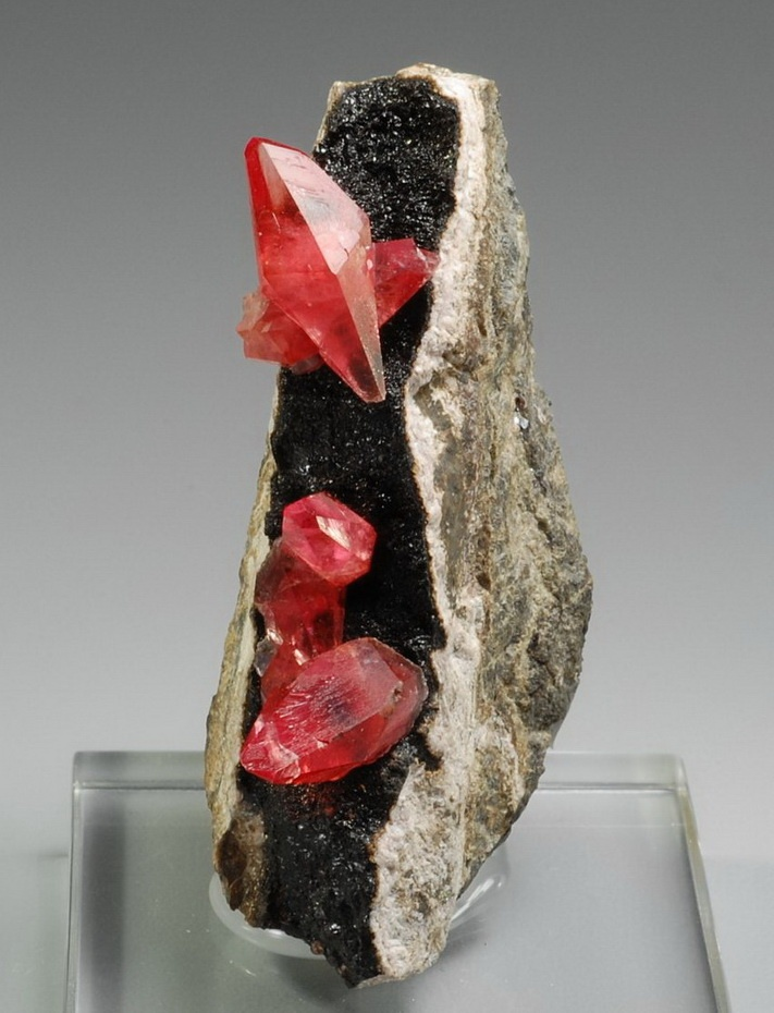 Scalenohedral Rhodochrosite perched individually on black Manganese matrix. From Uchucchacua Mine, Province de Oyon, Peru