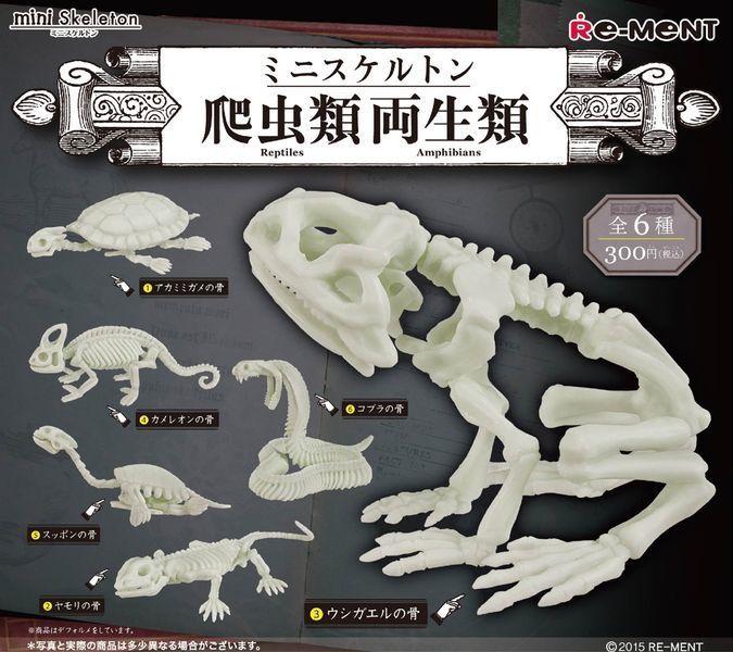 ミニスケルトン 爬虫類両生類 : 【ガチャガチャ】思わず欲しくなる最新カプセルトイ【おもしろグッズ】 - NAVER まとめ