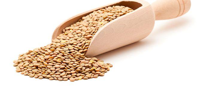 La lenteja es una hierba medicinal. Según la MTC, tiene la calidad de frío y sus funciones son disipar el calor y desintoxicar. Por ese motivo, la sopa de lentejas es un plato muy indicado para el verano ya que puede disipar el calo...