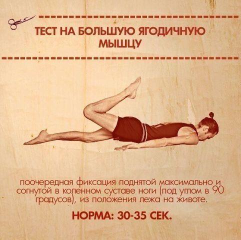 ТЕСТЫ НА ФУНКЦИОНАЛЬНУЮ СЛАБОСТЬ МЫШЦ. | thePO.ST