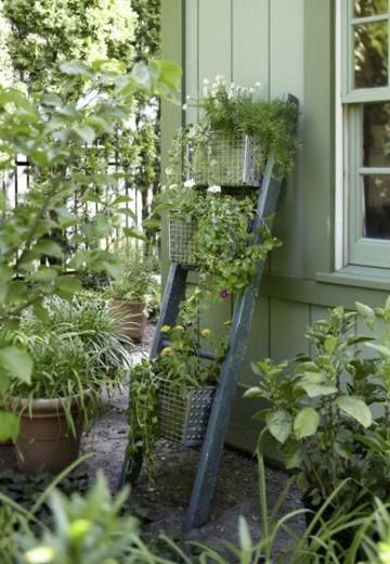 11 ways to upcycle in the garden   Living the Country Life