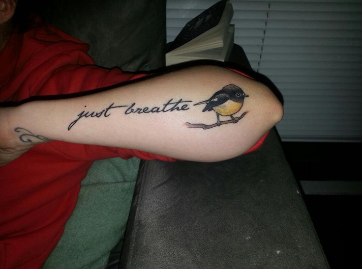 My latest tattoo that I got done by Erica, at Kingsland Ink, Auckland, New Zealand. I have a thing for birds, most of my tattoos feature birds in some form, and are all native NZ birds. This one is a Tomtit. The words are from the Pearl Jam song 'Just Breathe'.