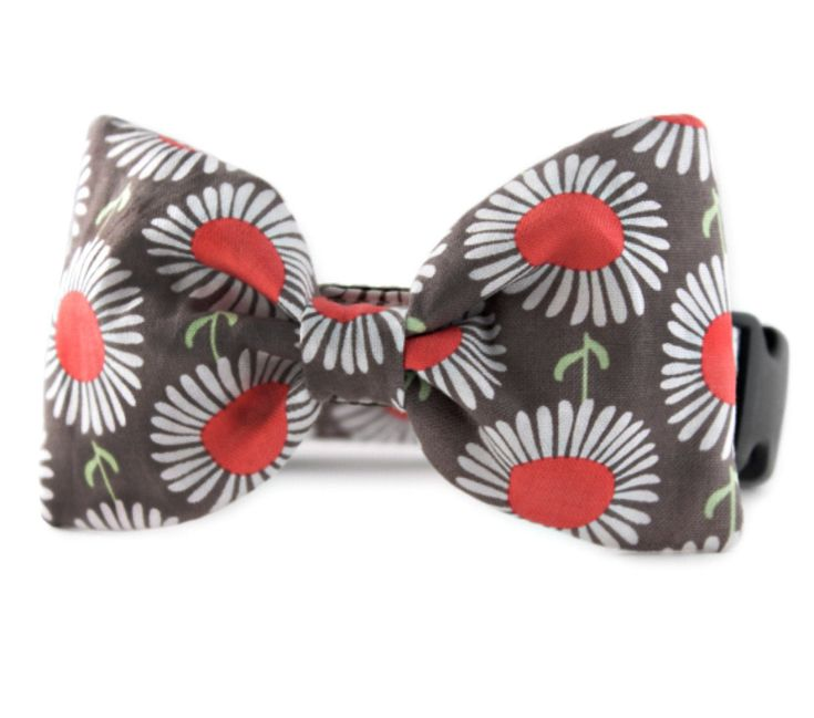 Daisy Bow Tie Dog Collar - Daisies in Taupe Bow Tie Dog Collar - Dog bowtie collar - Dog Bow Tie with Daisies - dog wedding attire