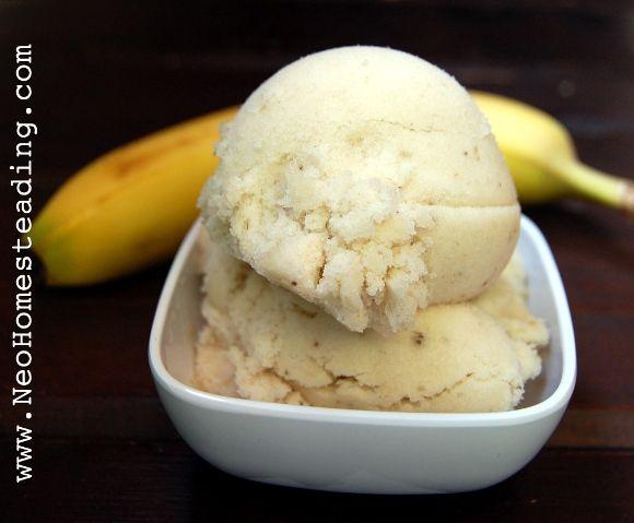 Magic Fruit: Frozen Desserts  Sorbet, Push-Pops & Soft-Serve Sorbet (Faux Ice Cream)