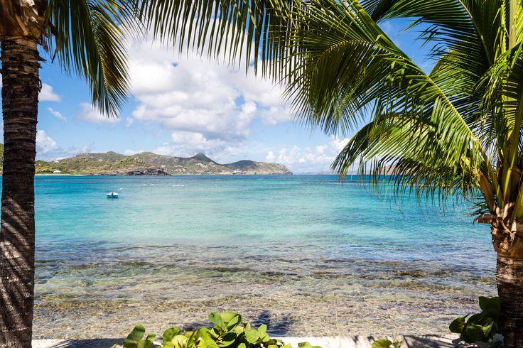 #BeachFriday in #StBarhs #StBarth #st-barthelemy #stbarthelemy #beach #caribbean #wintersun #holiday #luxuryholiday #beachholiday #beachdestination #indigolodges