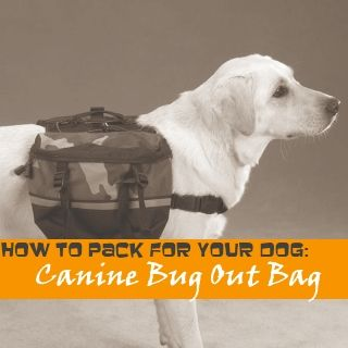 Dog Bug Out Bag | Preparing Your Pet in Case of Emergency. Click here for more info: http://www.DisasterPrepYourPet.com