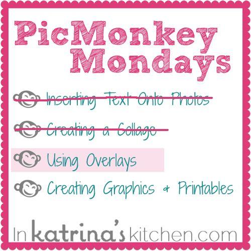 pink monkey editing