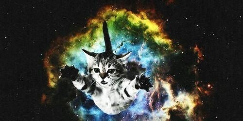 flying space cat cats in space pinterest cats space. Black Bedroom Furniture Sets. Home Design Ideas